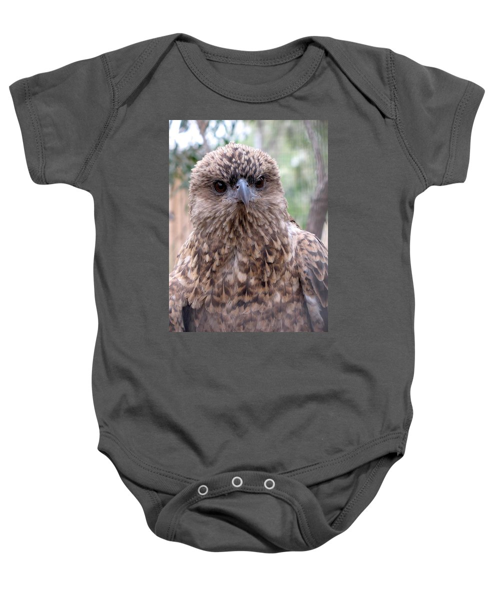 Hawk Baby Onesie featuring the photograph Brown Hawk Face Profile by Ian Mcadie