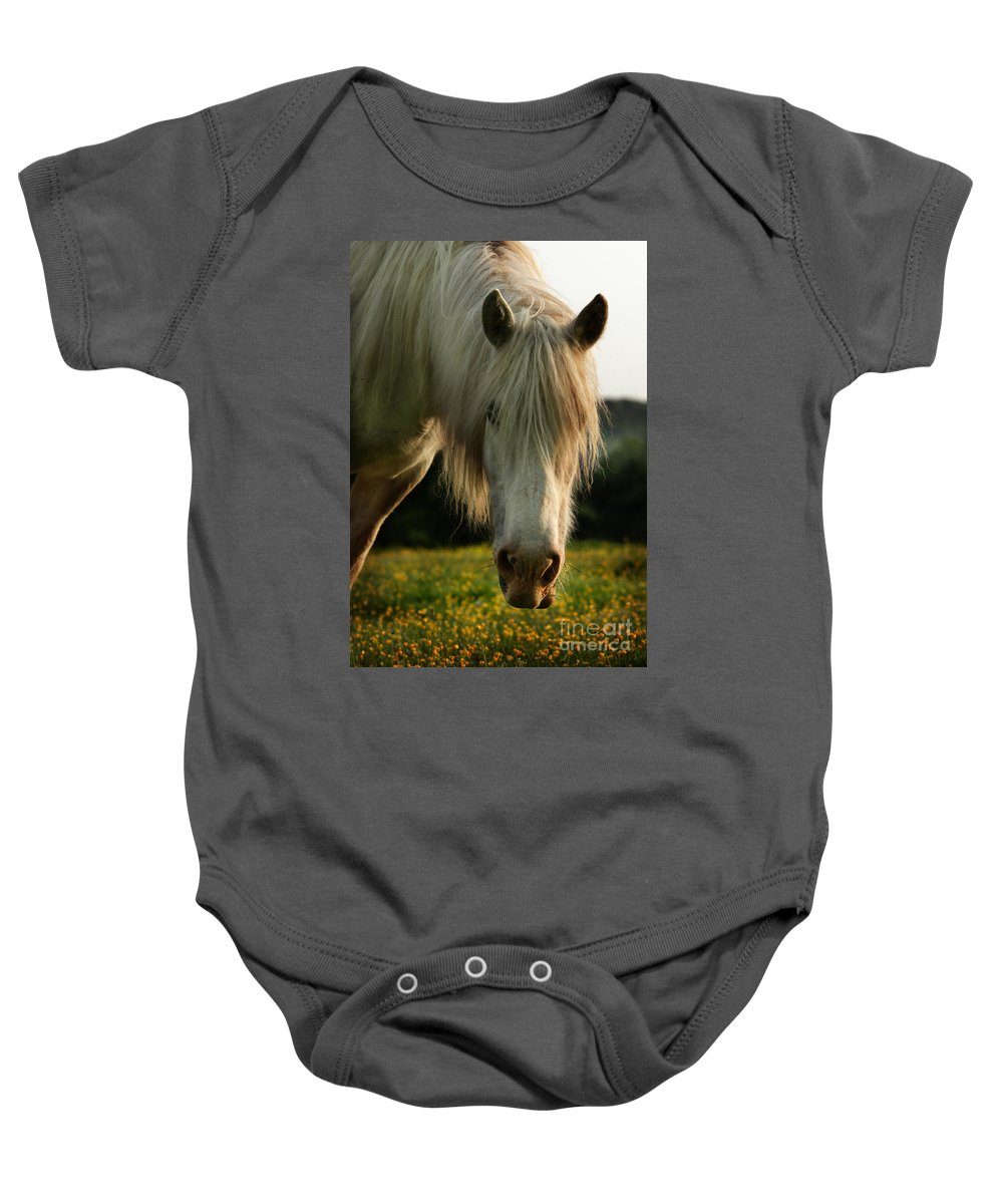 Grey Horse Baby Onesie featuring the photograph Hello Mate by Angel Ciesniarska