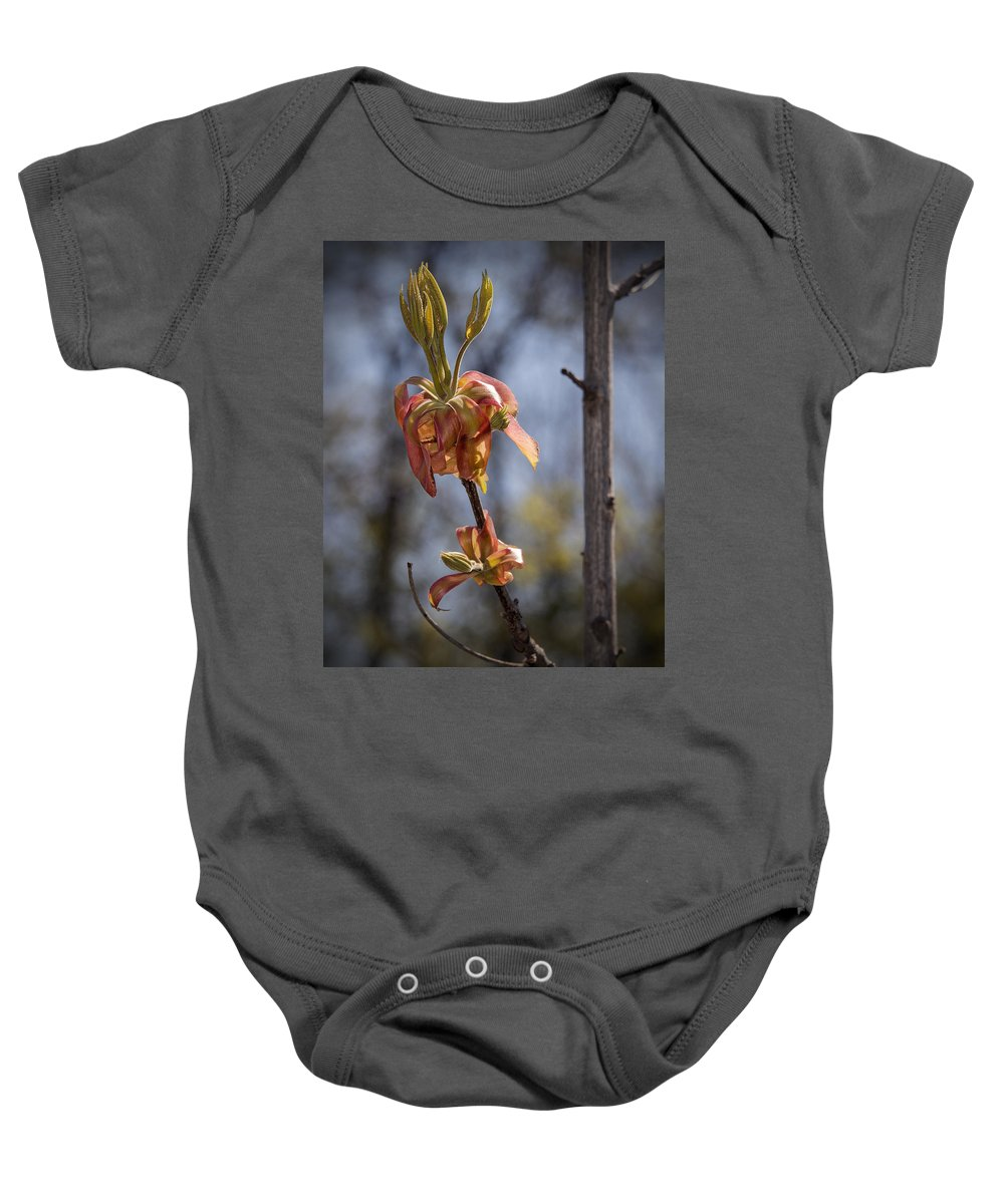 Hickory Baby Onesie featuring the photograph Hickory Bloom by Jayne Gohr