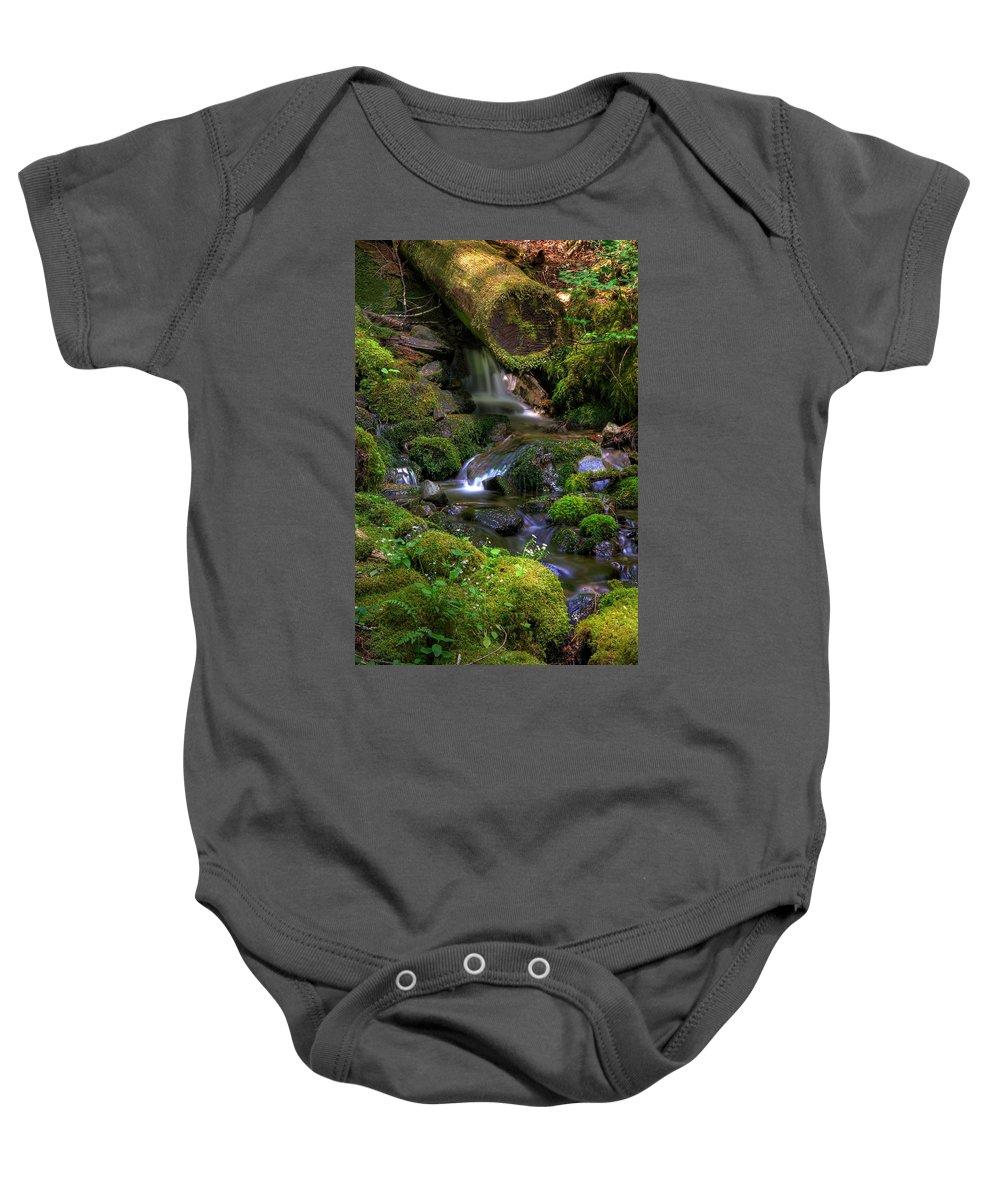 Brook Baby Onesie featuring the photograph Hidden Brook by John Absher