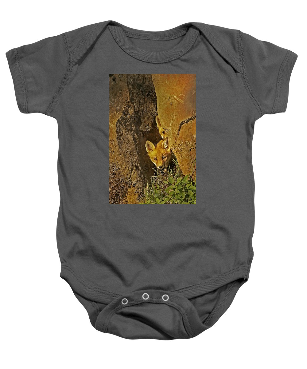 Fox Baby Onesie featuring the photograph Hide And Seek by Jack Milchanowski