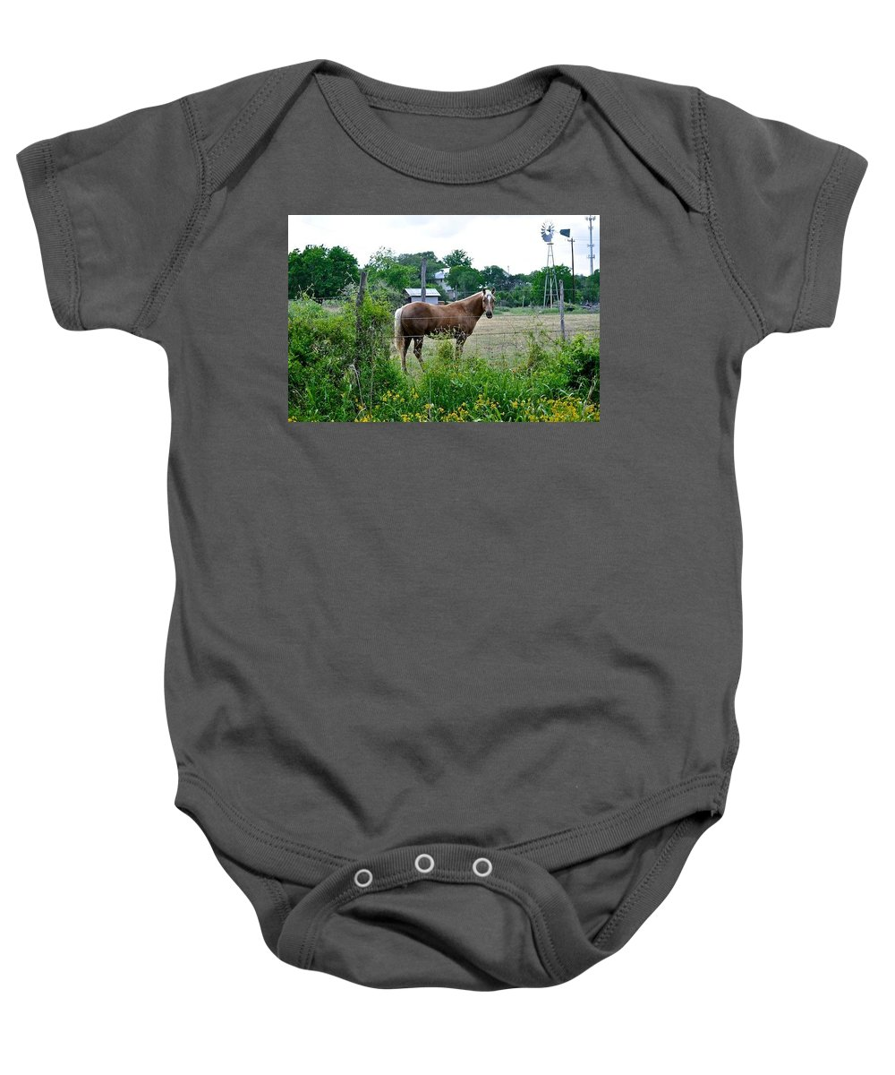 Horse And Flower Print Baby Onesie featuring the photograph Country Horse by Kristina Deane