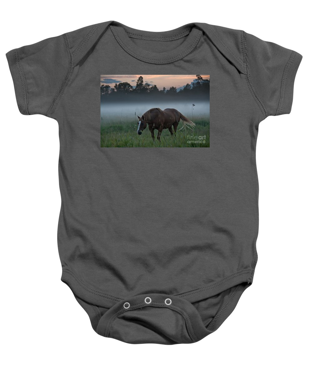 Landscape Baby Onesie featuring the photograph Horse And Fog by Cheryl Baxter