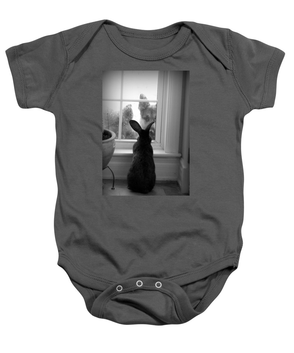 Rabbit Baby Onesie featuring the photograph How Much Is The Doggie In The Window? by Sue Long