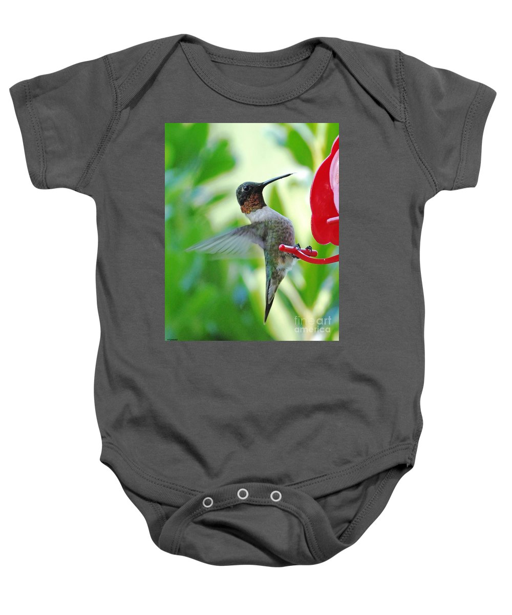 Hummingbird Baby Onesie featuring the photograph Hummingbird Male Ruby Throated by Lizi Beard-Ward