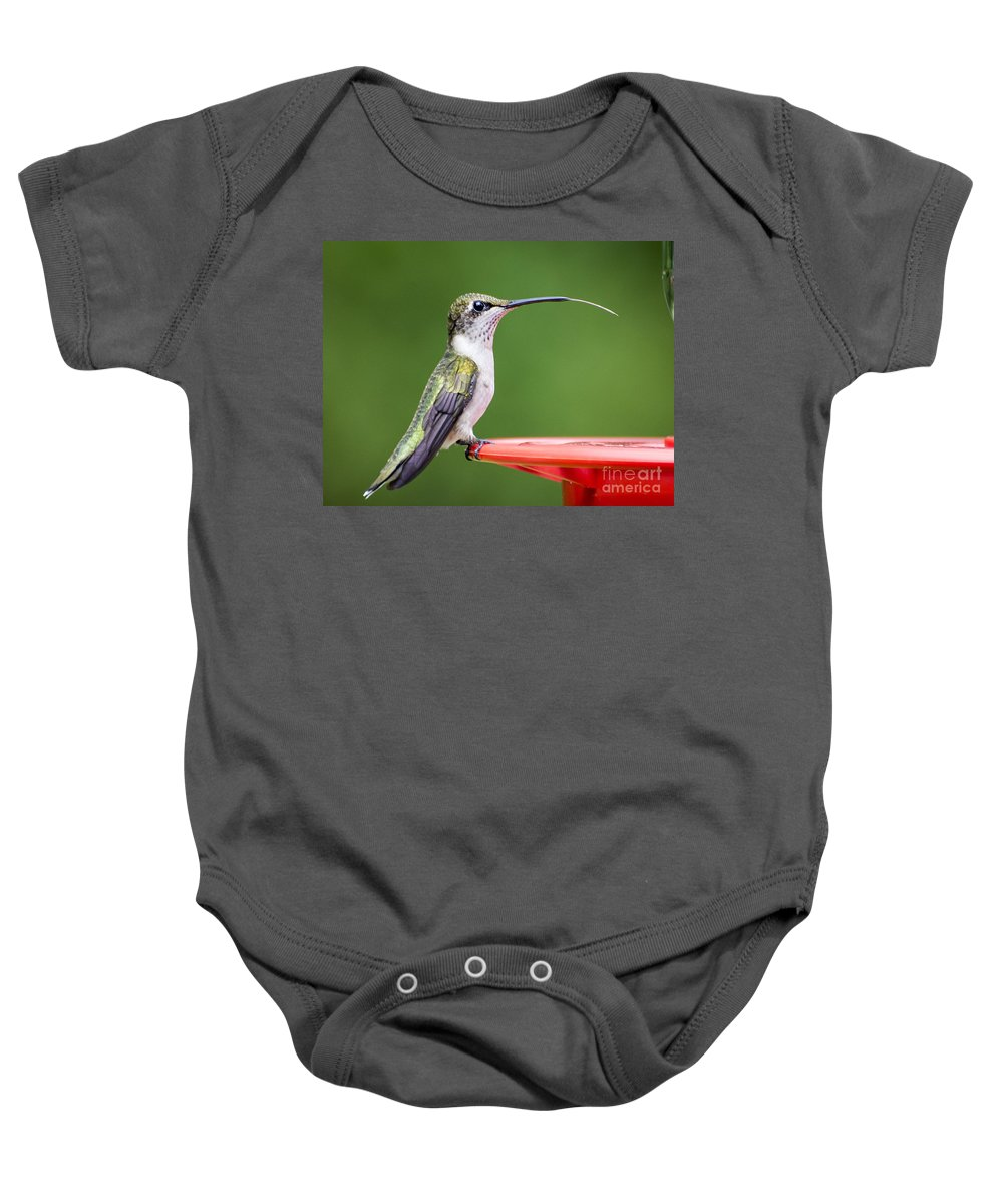 Hummingbird Feathers Baby Onesie featuring the photograph Hummingbird Sticky Her Tongue Out by TJ Baccari