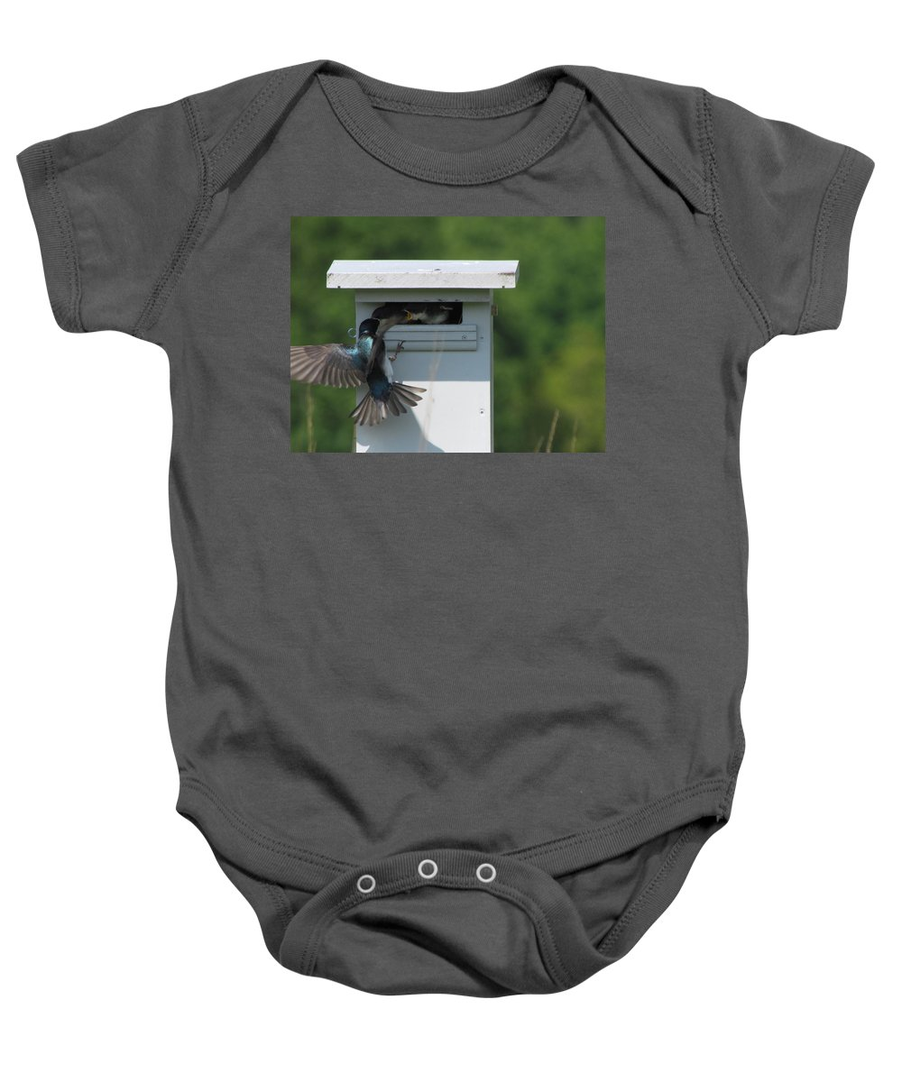 Tree Swallow Baby Onesie featuring the photograph Hungry Nestling. by Eric Noa