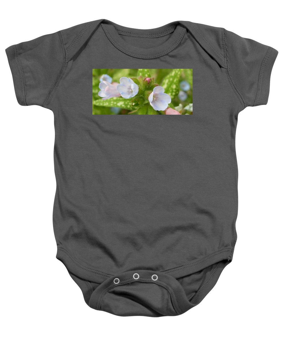 Flowers Baby Onesie featuring the photograph Hydrangeas 2 by Coleen Harty