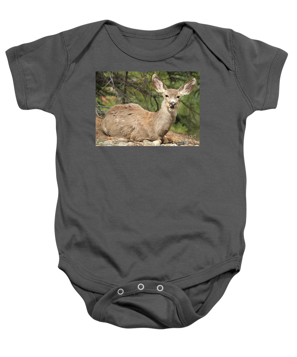 Rocky Mountain National Park Baby Onesie featuring the photograph I Hear You by Adam Jewell