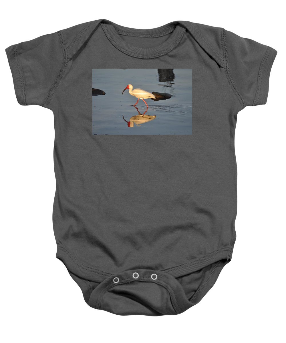 Ibis In Reflection Baby Onesie featuring the photograph Ibis In Reflection by Bill Cannon