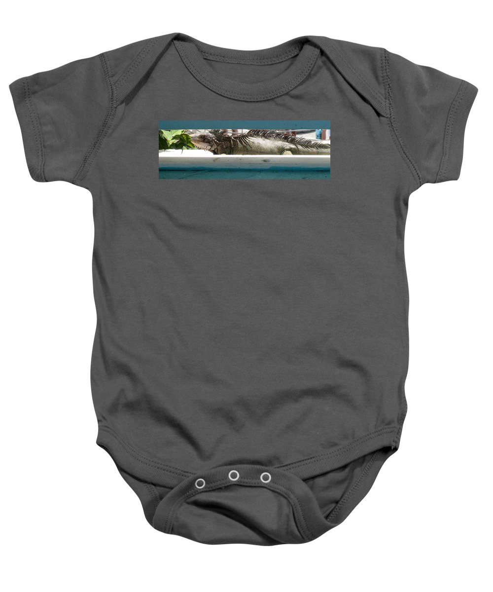 Animal Photographs Baby Onesie featuring the photograph Iggy by Jennifer E Doll