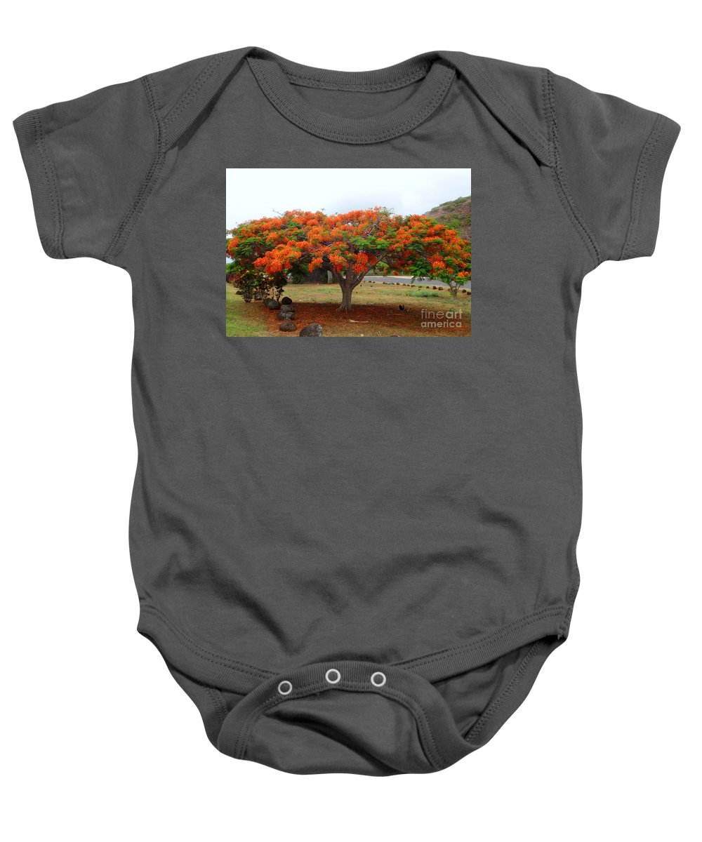 Trees Baby Onesie featuring the photograph In The Shade Of The Poincianas by Mary Deal