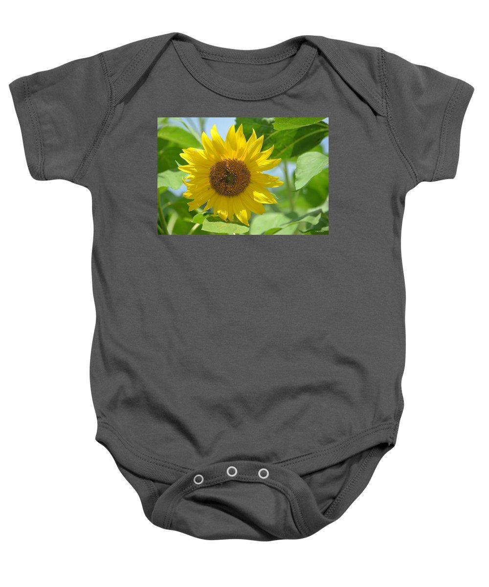 In The Sunflower Field Baby Onesie featuring the photograph In The Sunflower Field by Maria Urso