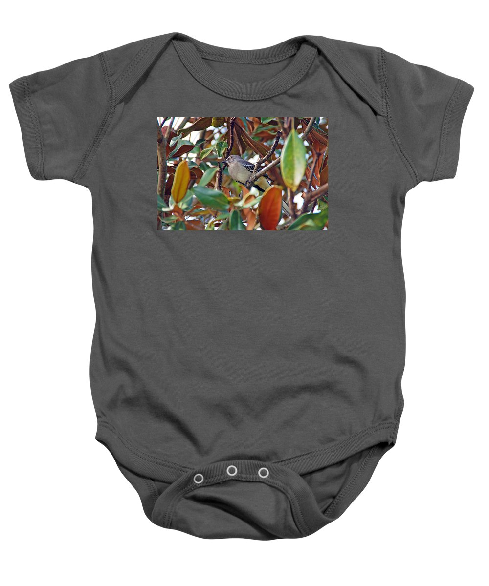 Bird Baby Onesie featuring the photograph In The Tree by Aimee L Maher ALM GALLERY