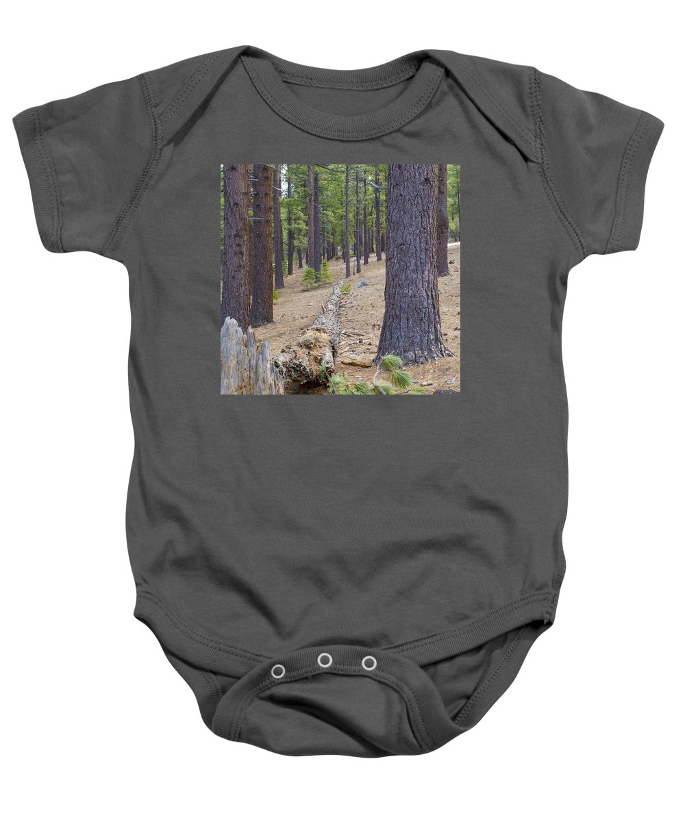 Nevada Baby Onesie featuring the photograph Into The Forest by Brent Dolliver