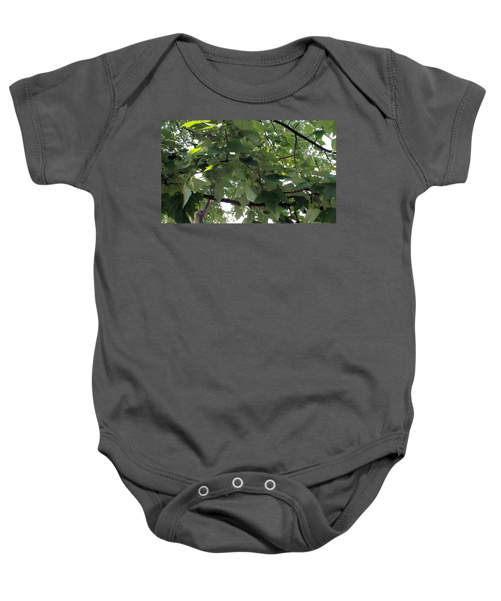 Non Duality Baby Onesie featuring the photograph Into The Woods by Paula Andrea Pyle