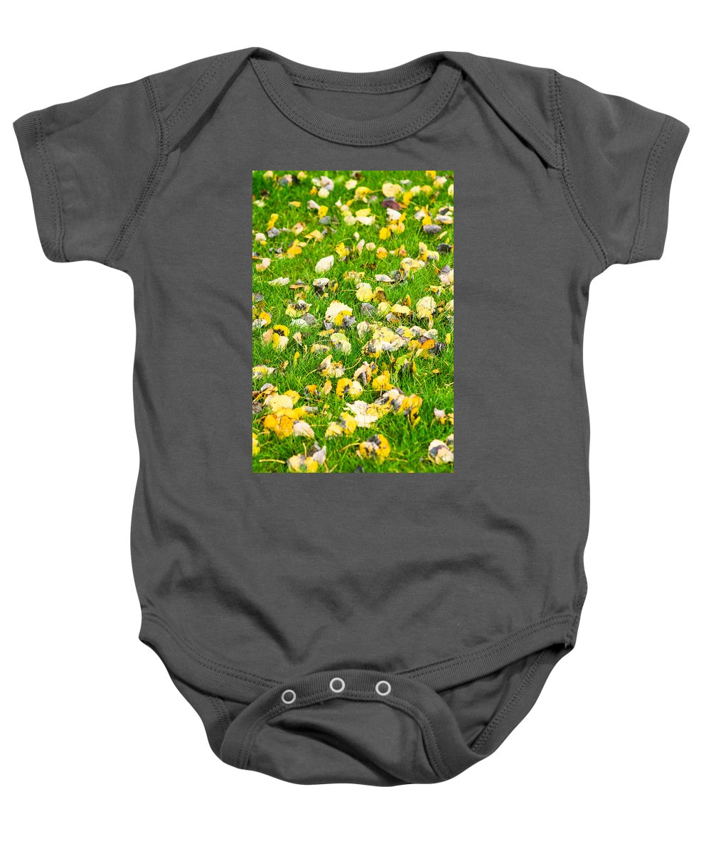Agriculture Baby Onesie featuring the photograph iPhone Case - Yellow And Green by Alexander Senin