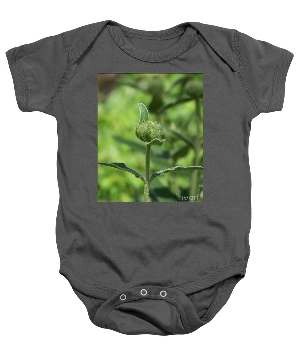 Plants Baby Onesie featuring the photograph Its a Green World by Kathy McClure