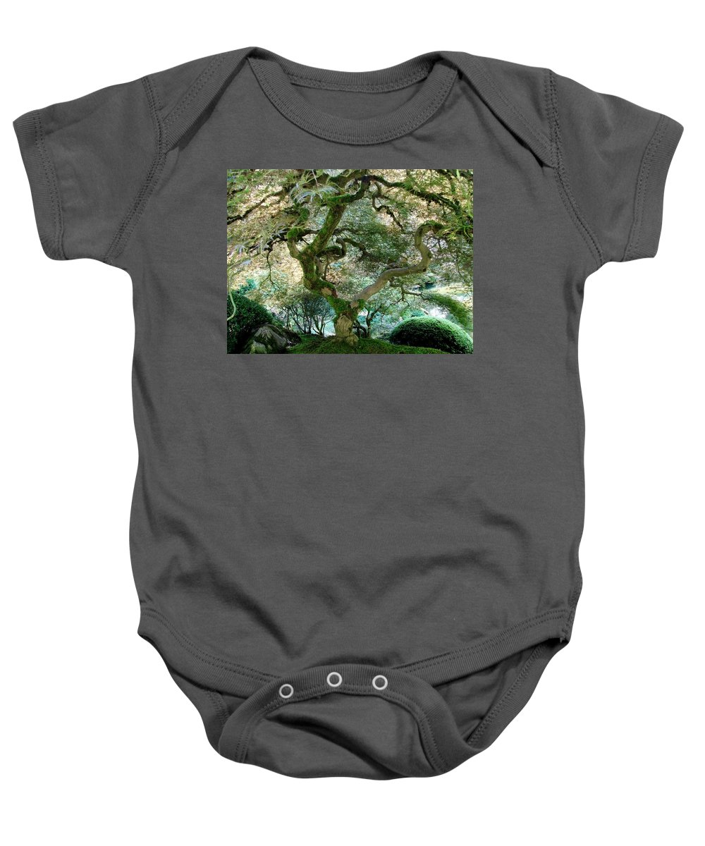 Japanese Maple Tree Baby Onesie featuring the photograph Japanese Maple Tree II by Athena Mckinzie