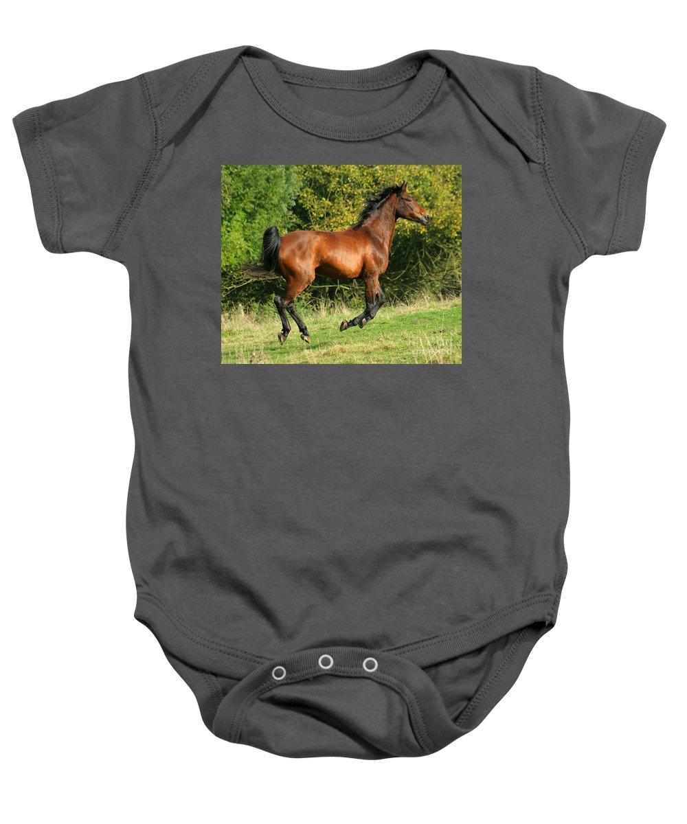 Horse Baby Onesie featuring the photograph Jump Jump Jump by Angel Ciesniarska