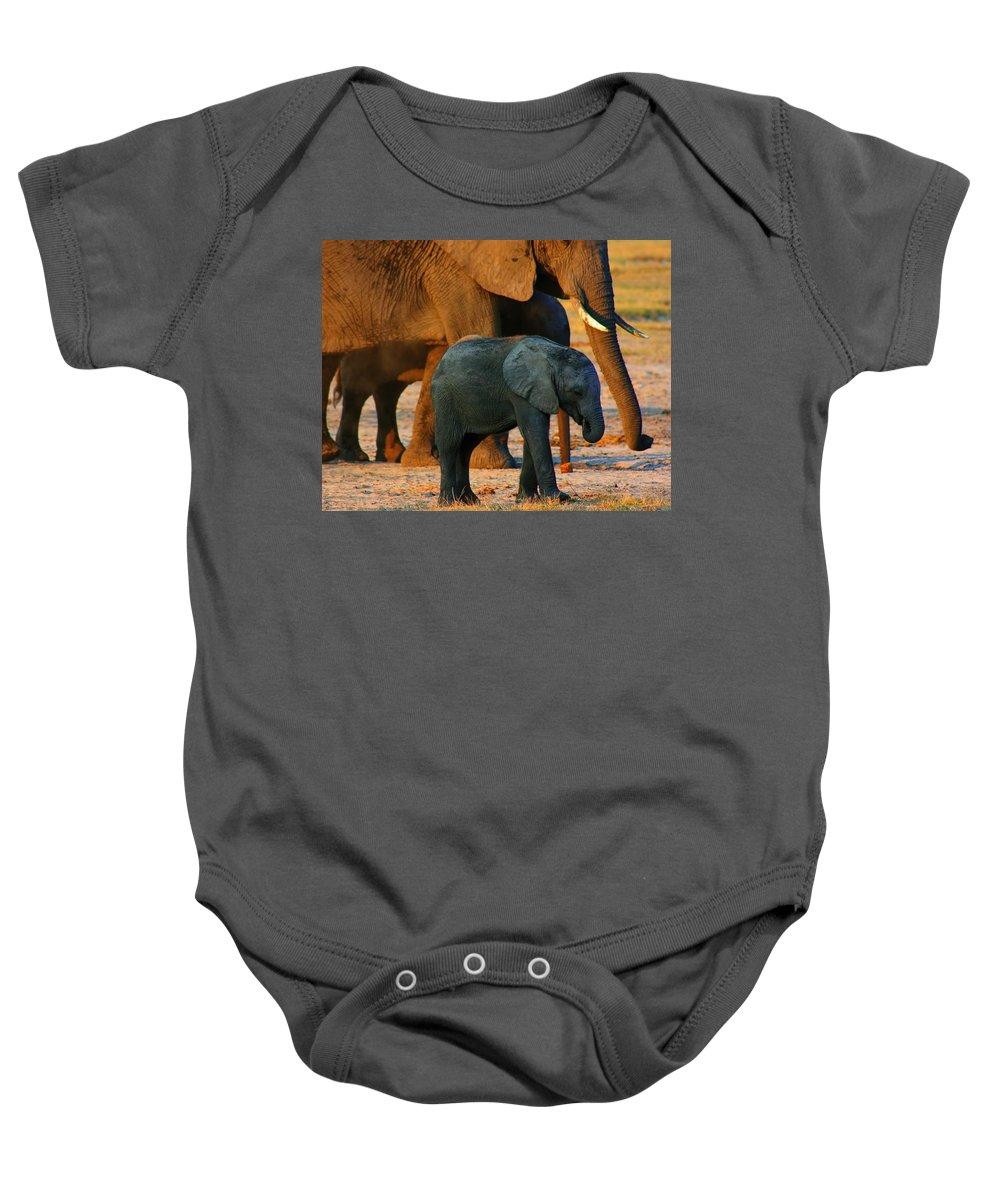 Elephants Baby Onesie featuring the photograph Kalahari Elephants by Amanda Stadther