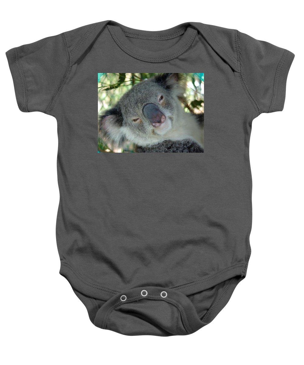 Koala Baby Onesie featuring the photograph Koala Face by Ian Mcadie