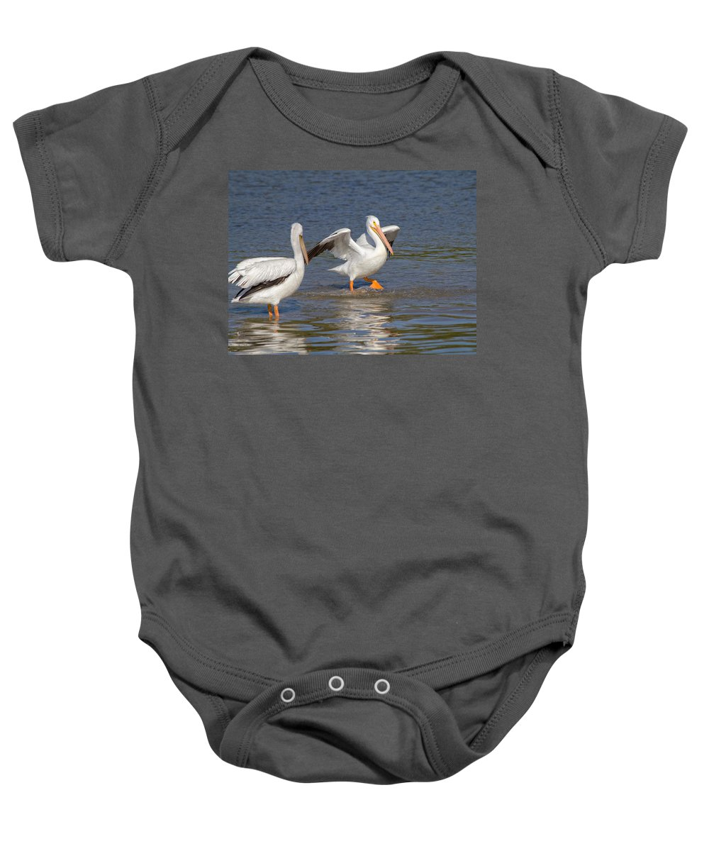 Pelican Baby Onesie featuring the photograph Let's Dance by Kim Hojnacki