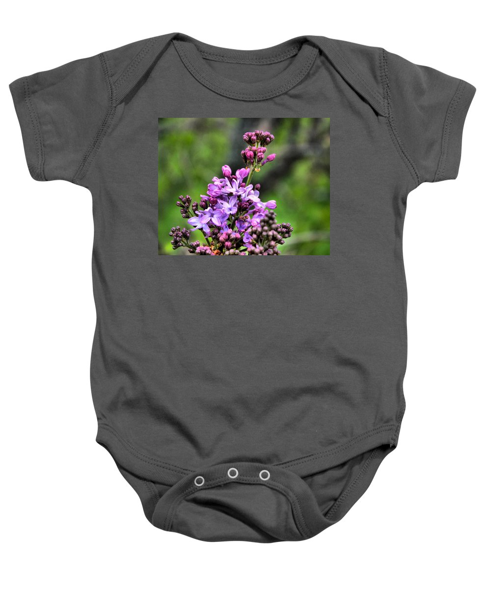 Flower Baby Onesie featuring the photograph Lilacs by Tim Buisman