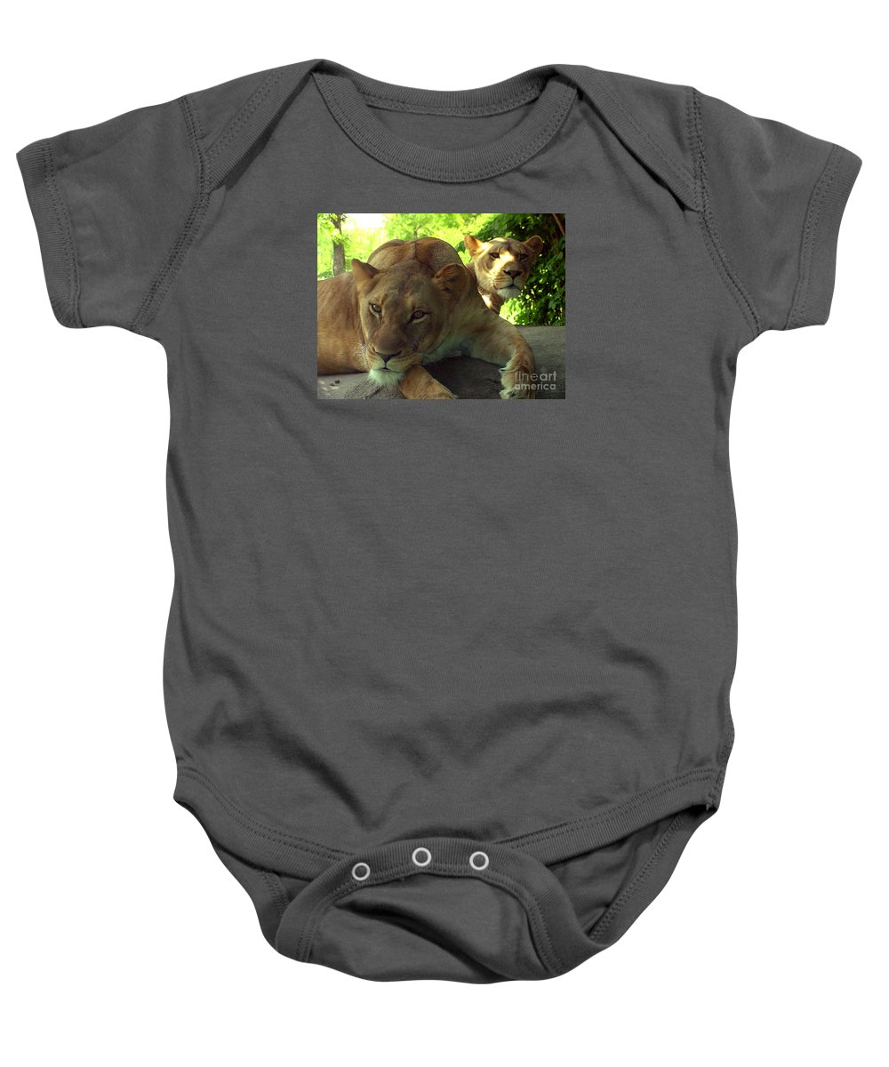 Lion Baby Onesie featuring the photograph Lioness-00104 by Gary Gingrich Galleries