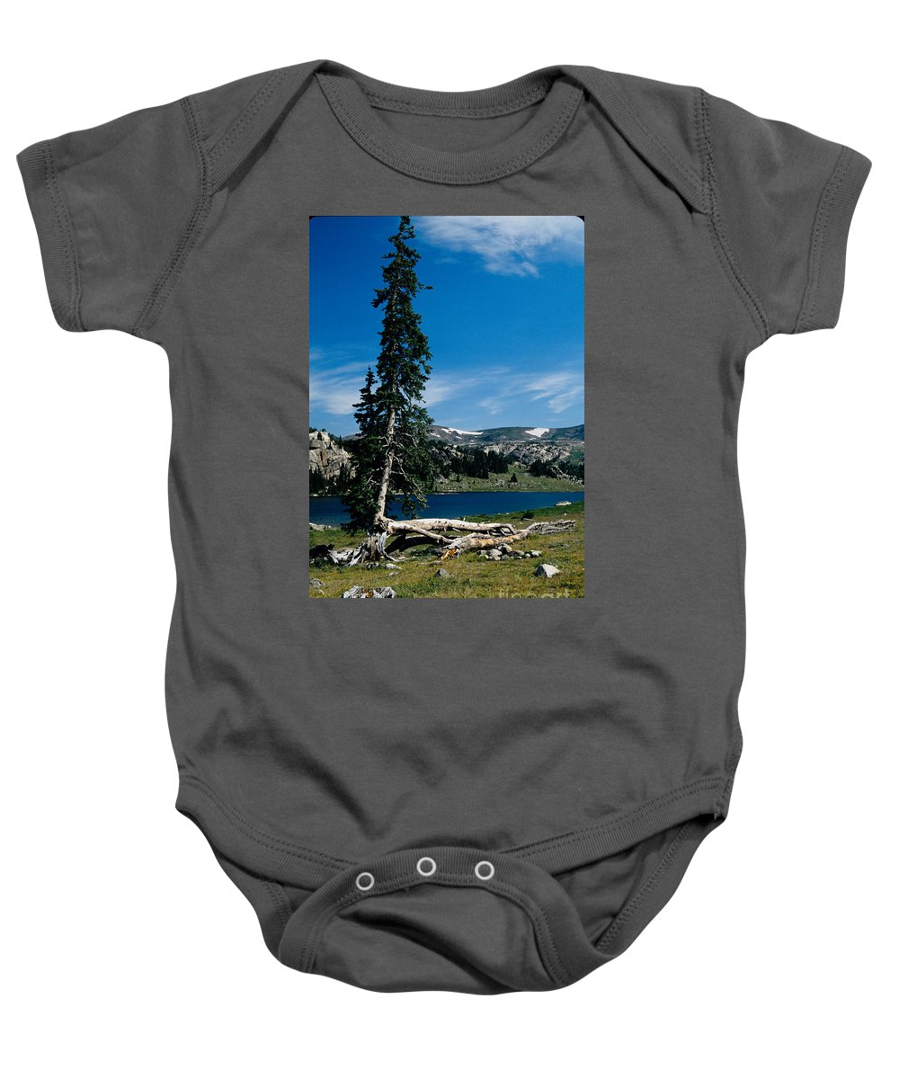 Mountains Baby Onesie featuring the photograph Lone Tree At Pass by Kathy McClure