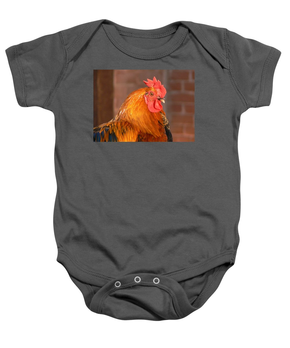 Rooster Baby Onesie featuring the photograph Look At Me by Laurel Powell