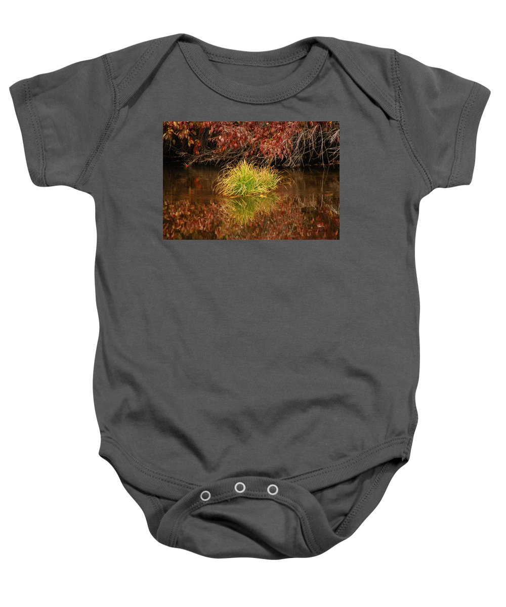 Fall Baby Onesie featuring the photograph Lost In A Sea Of Color by Donna Blackhall