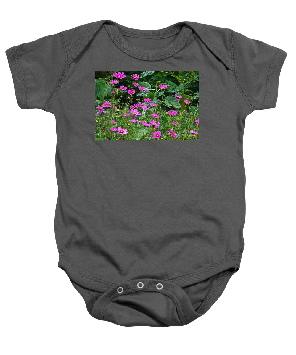 Cosmos Baby Onesie featuring the photograph Lots Of Cosmos by Byron Varvarigos