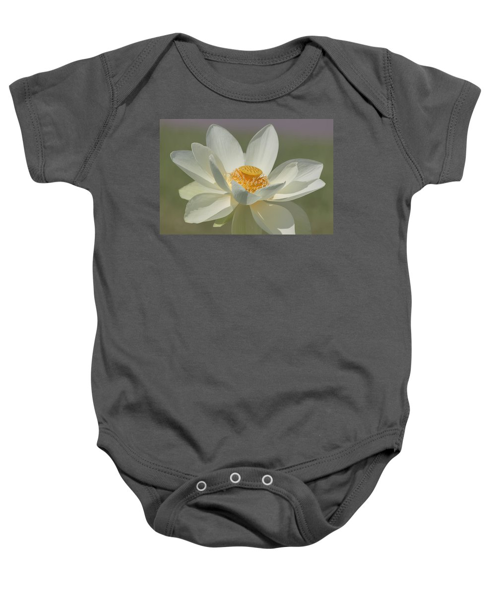 Lotus Baby Onesie featuring the photograph Lotus Flower by Kim Hojnacki