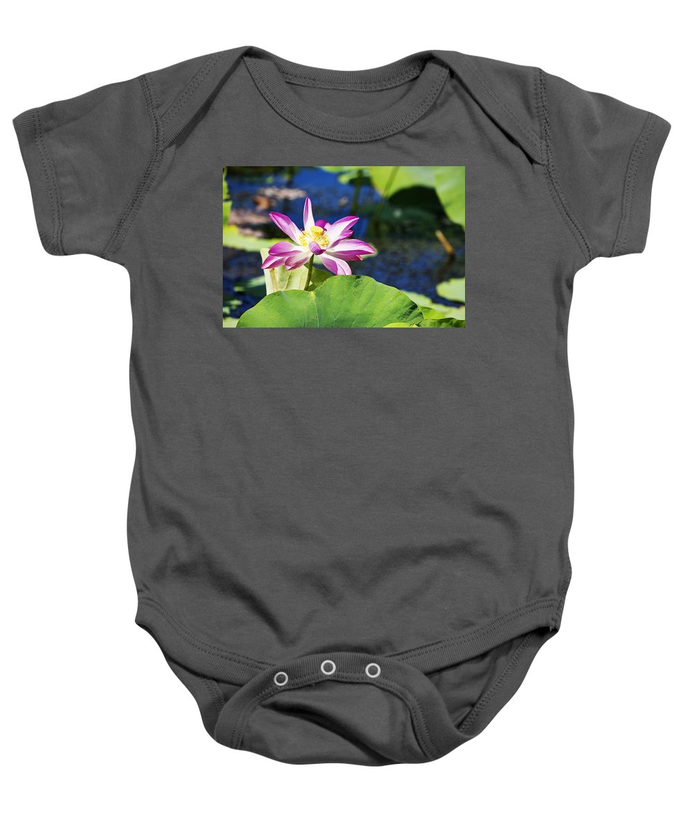 Lotus Flower Baby Onesie featuring the photograph Lotus Flower V6 by Douglas Barnard