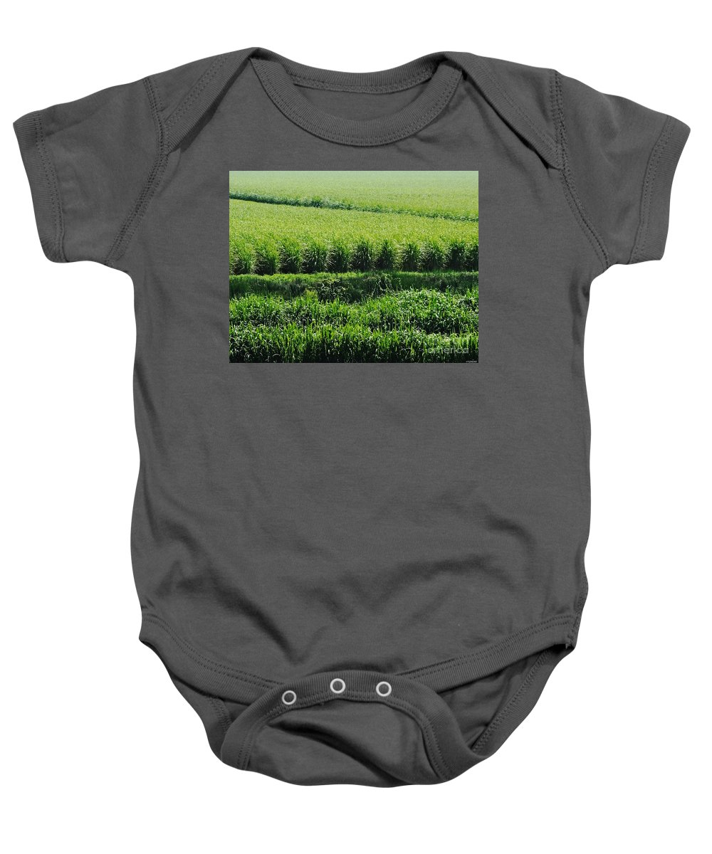 Agriculture Baby Onesie featuring the photograph Louisiana Cane Field by Lizi Beard-Ward