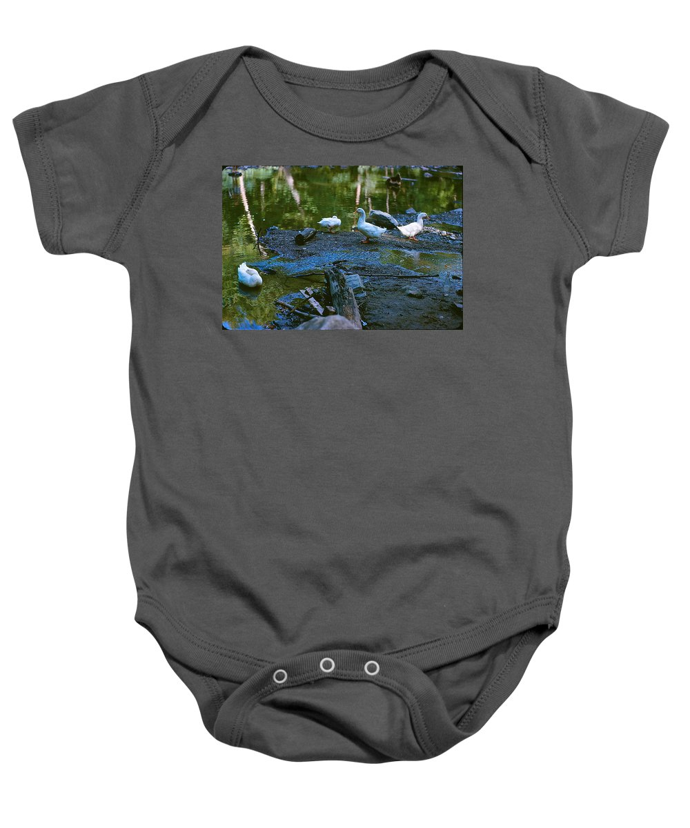 Ducks Baby Onesie featuring the photograph Lucky Ducks by Ira Shander