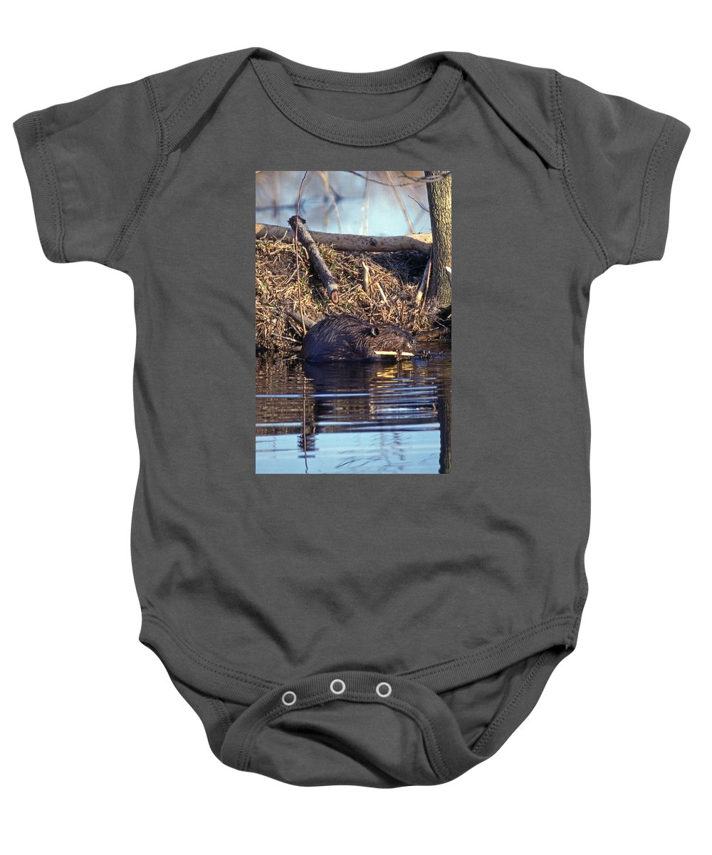 Nature Baby Onesie featuring the photograph Lunch At The Lodge by Skip Willits