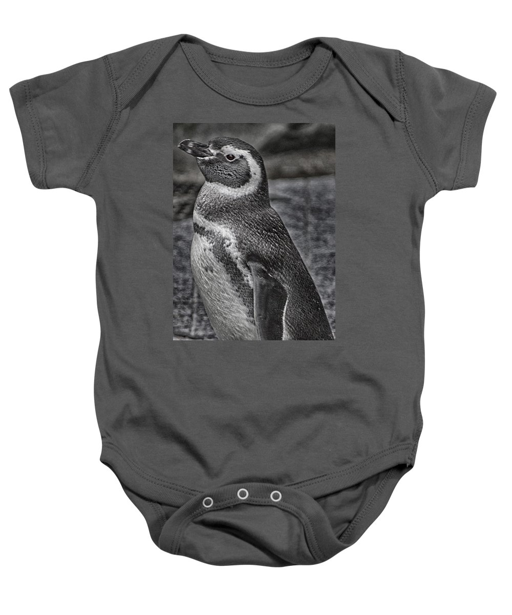 Magellanic Penguins Baby Onesie featuring the photograph Magellanic Penguin by Leah Palmer