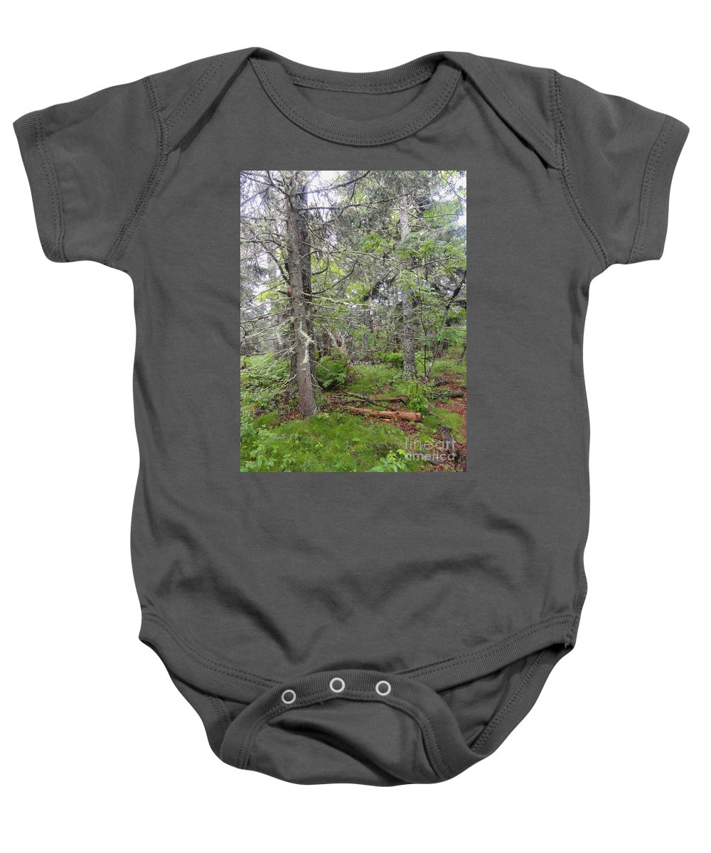 Maine Baby Onesie featuring the photograph Maine Forest by Meandering Photography
