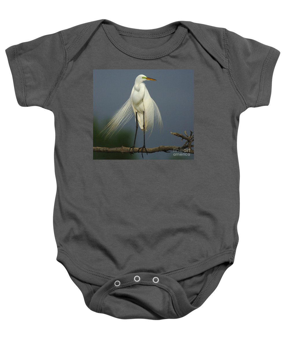 Majestic Great Egret Baby Onesie featuring the photograph Majestic Great Egret by Bob Christopher