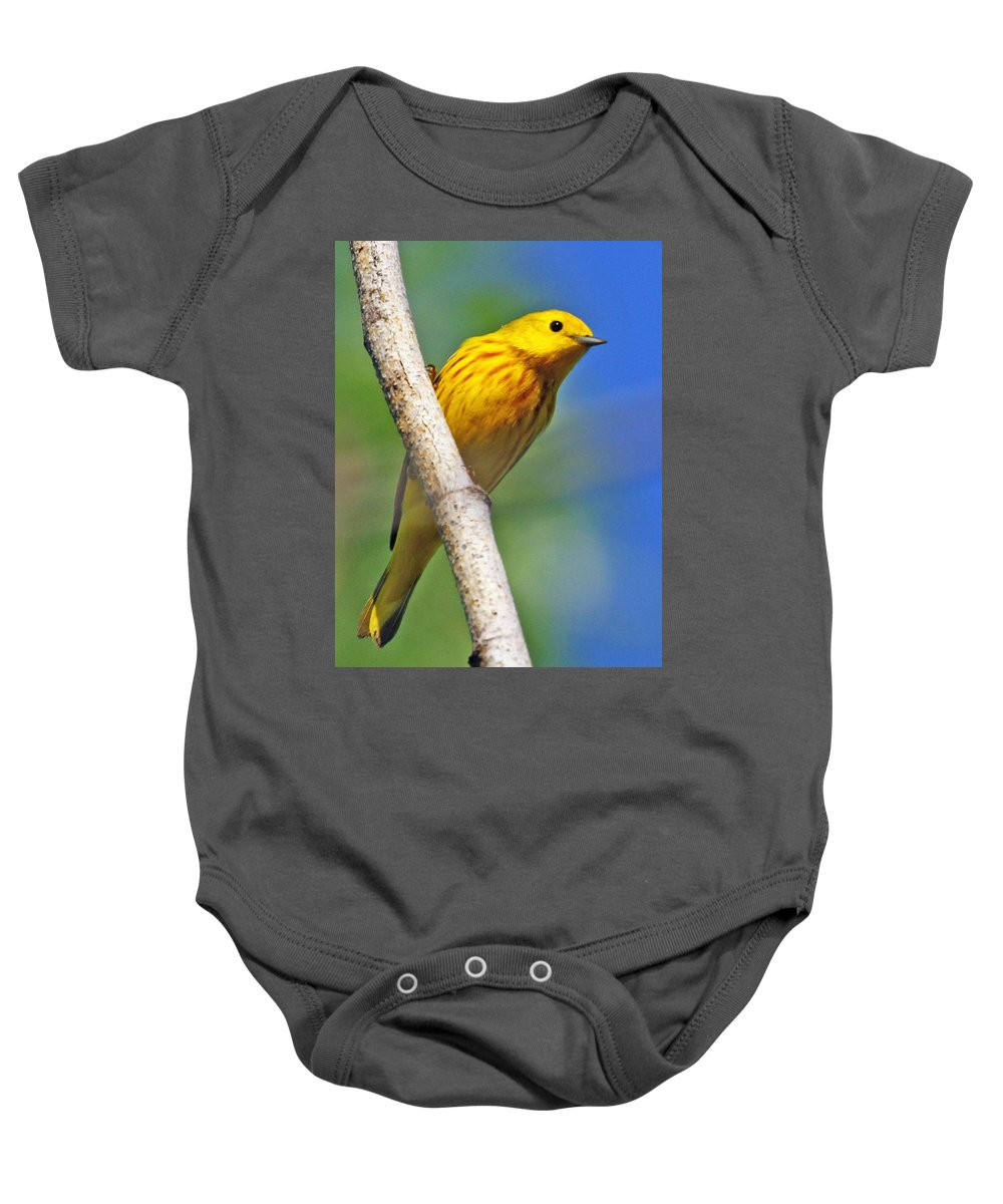 Yellow Baby Onesie featuring the photograph Male Yellow Warbler by Dee Carpenter