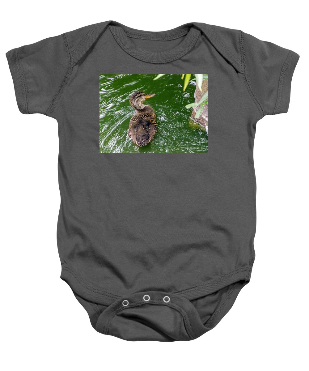 Anas Platyrhynchos Baby Onesie featuring the photograph Mallard Duckling by Kate Brown