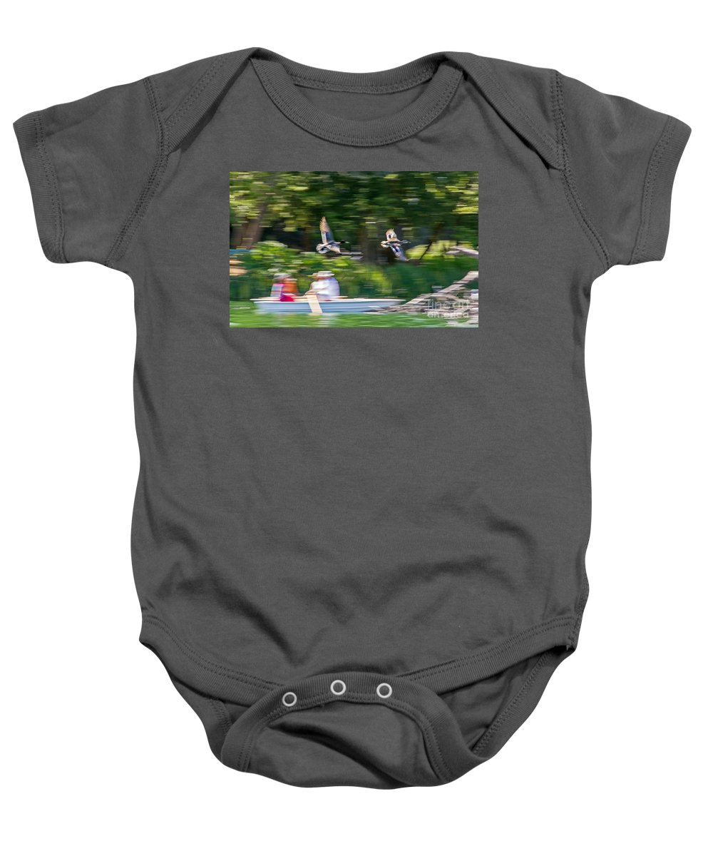 Anas Platyrhynchos Baby Onesie featuring the photograph Mallard Flyover by Kate Brown