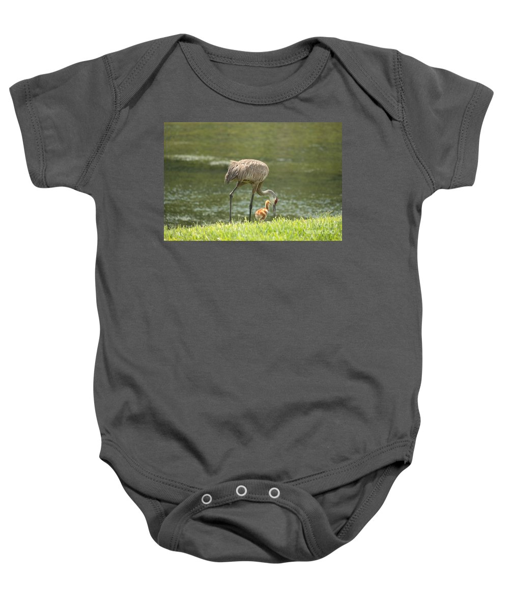 Sandhill Crane Baby Onesie featuring the photograph Mama And Chick by Carol Groenen