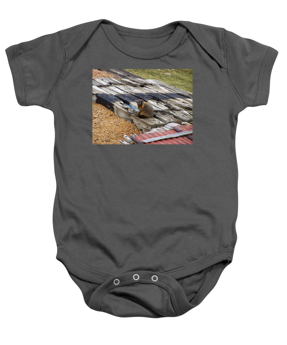 Marmot Baby Onesie featuring the photograph Marmot Resting On A Railroad Tie by Chris Flees