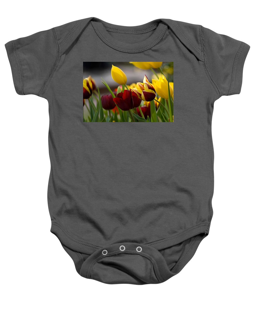 Flower Baby Onesie featuring the photograph Maroon And Gold Tulips by Benjamin Reed