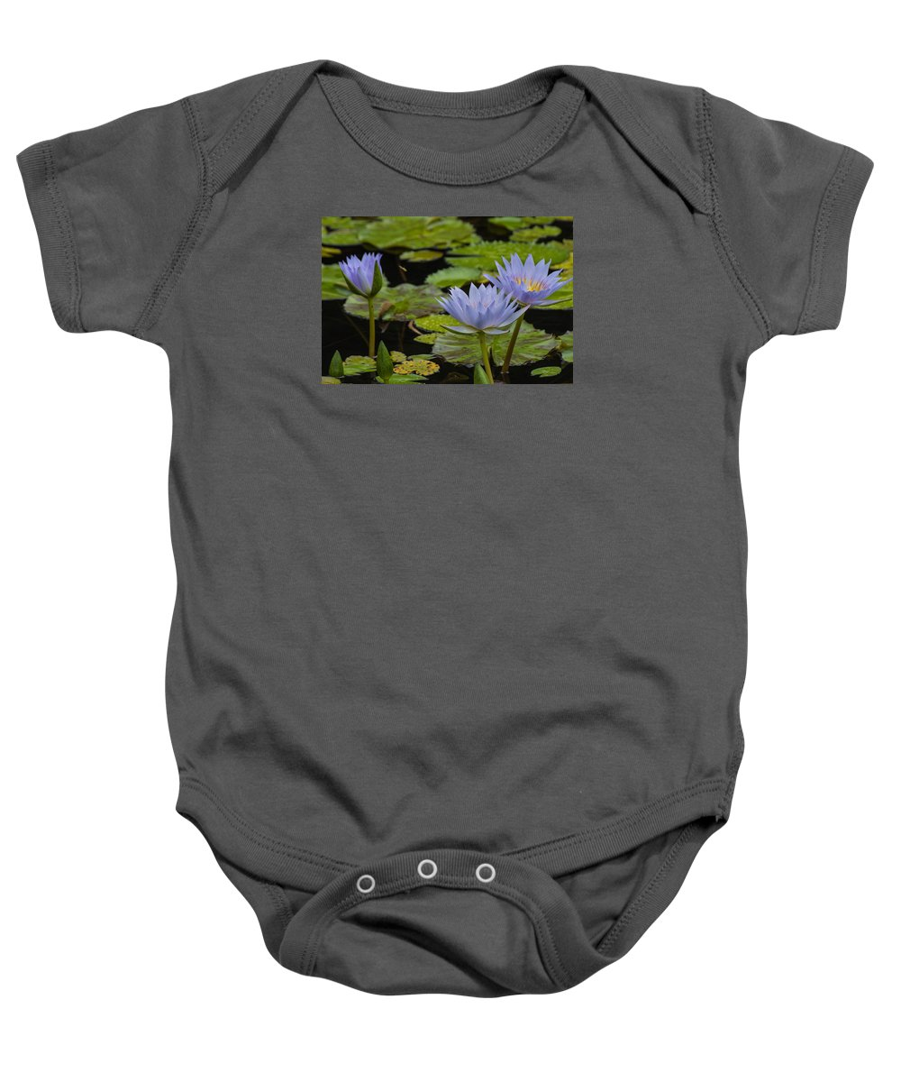 Garden Baby Onesie featuring the photograph Meditative Garden by Julie Andel