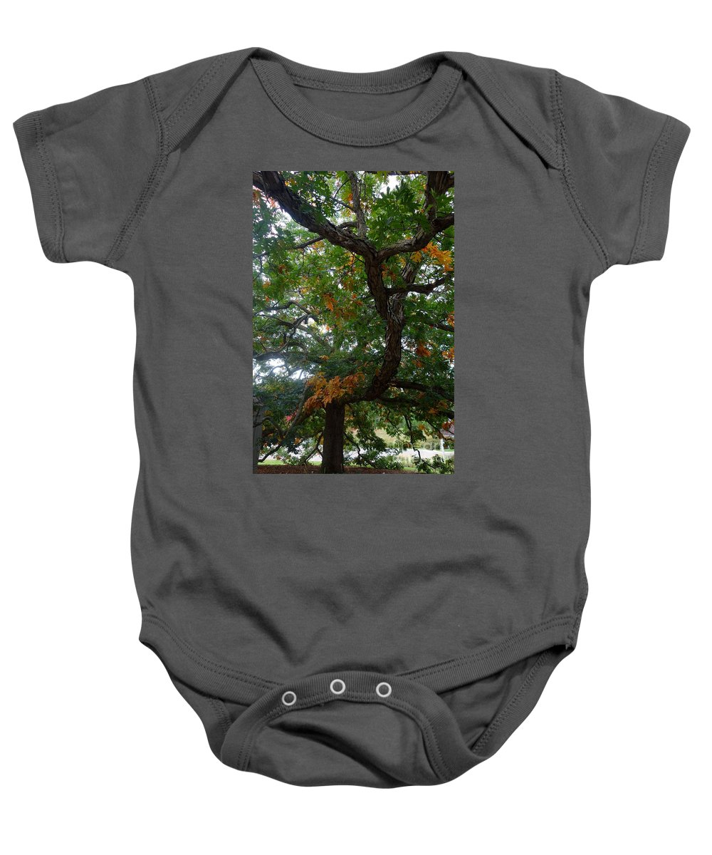 Tree Baby Onesie featuring the photograph Mighty Fall Oak #2 by Jacqueline Athmann