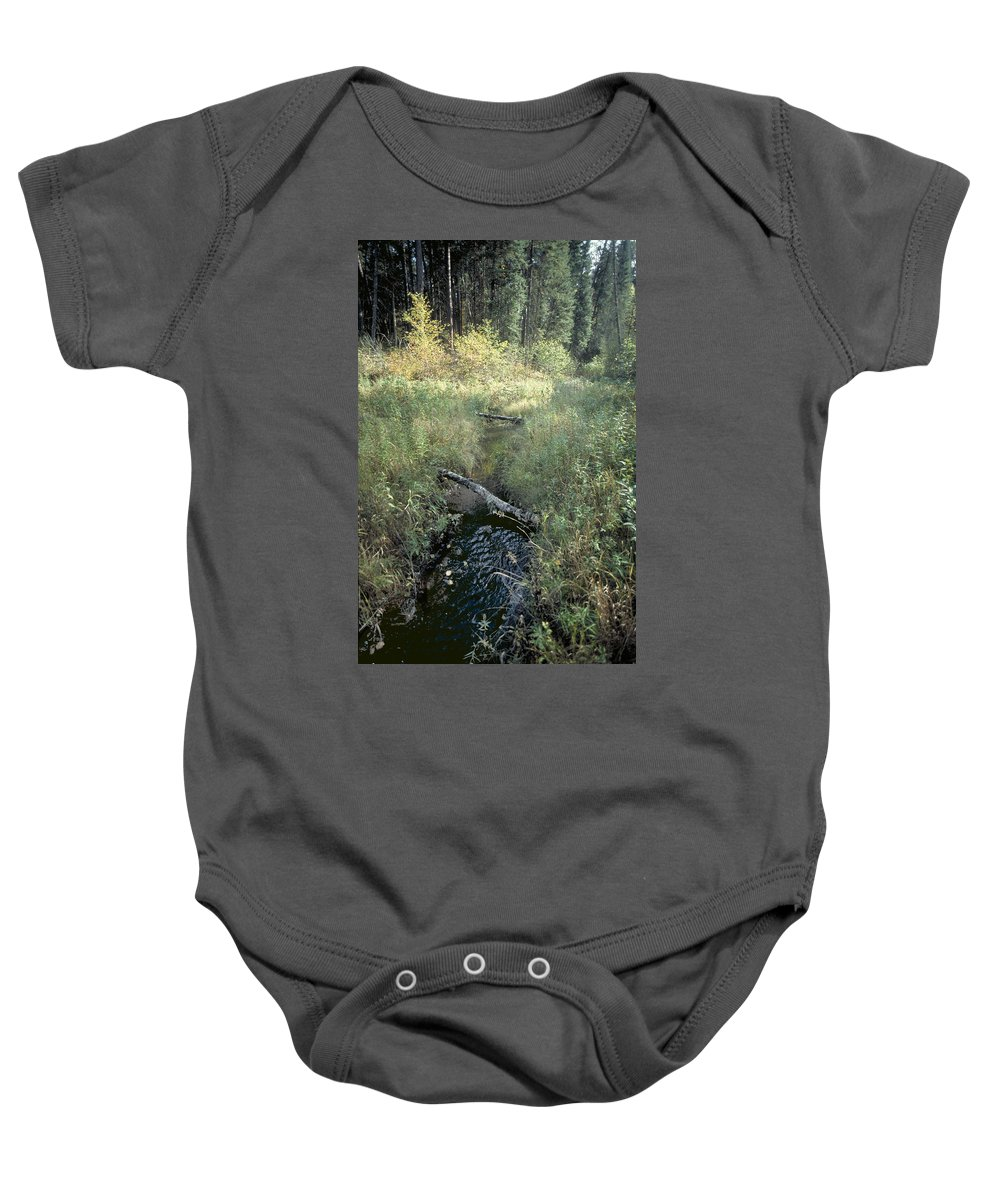 Mississppi River Baby Onesie featuring the photograph Mississippi River Headwaters by Garry McMichael